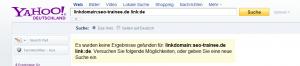 So könnte die Yahoo-Abfrage bald auch in Deutschland aussehen