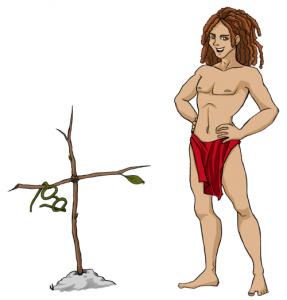 Unwissenheit überwunden: SEO-Tarzan
