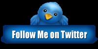 Twitter Follow-Button