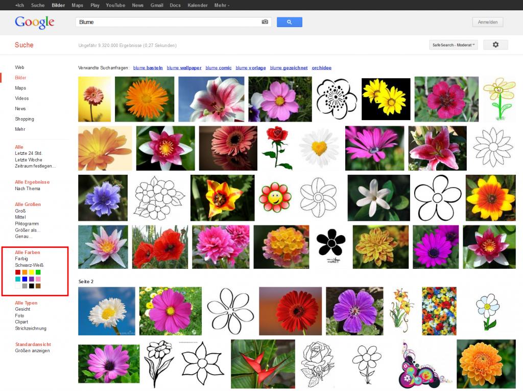Google Suchergebnisse Blume