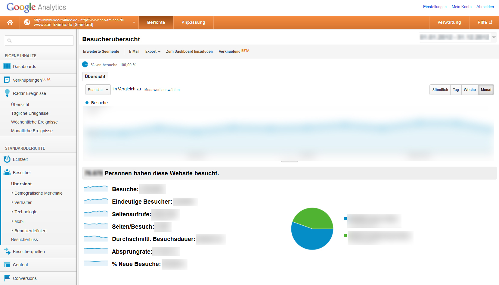 Screenshot des SEO-Trainee.de-Analytics Account zur Veranschaulichung der Layout-Veränderungen