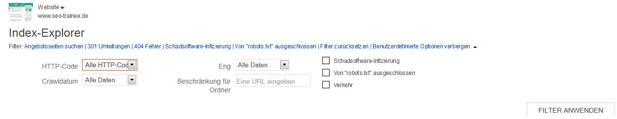 Der Index-Explorer der Bing Webmaster Tools