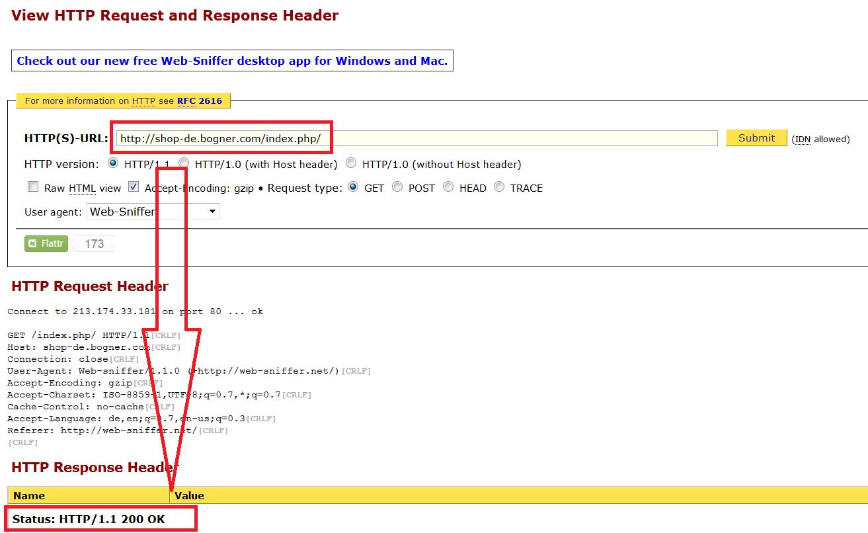 websniffer duplicate content startseite