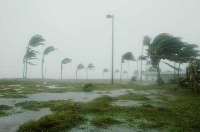 Das Florida Update wütet wie ein Hurricane