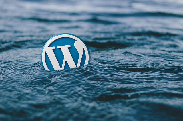 wordpress-588494_640