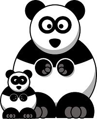 Doppelter Panda
