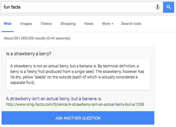 google-fun-fact-box