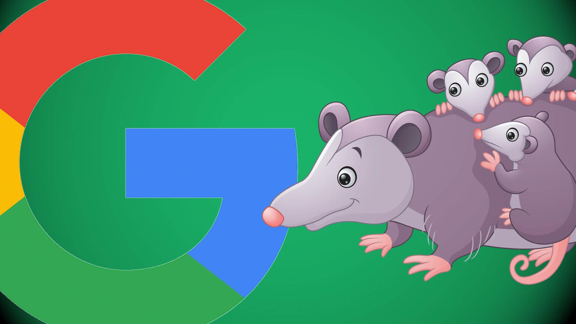google update possum local