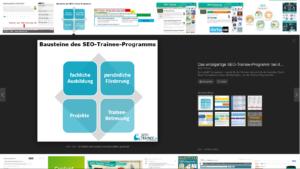 Ansicht einer Grafik mit Branding von seo-trainee.de in der Google-Bildersuche