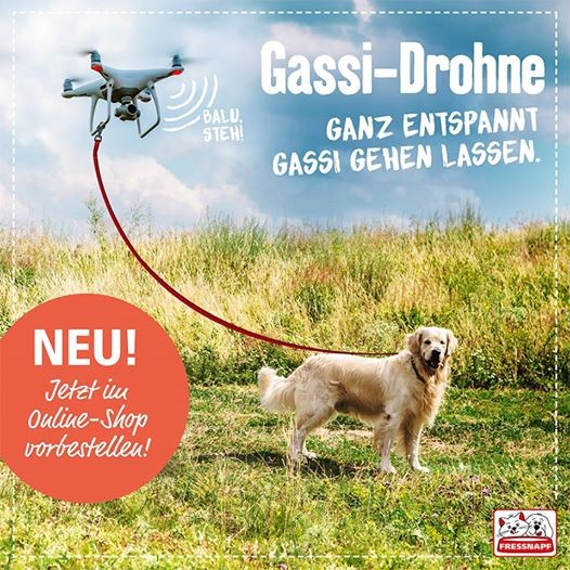 Die Gassi-Drohne von Fressnapf