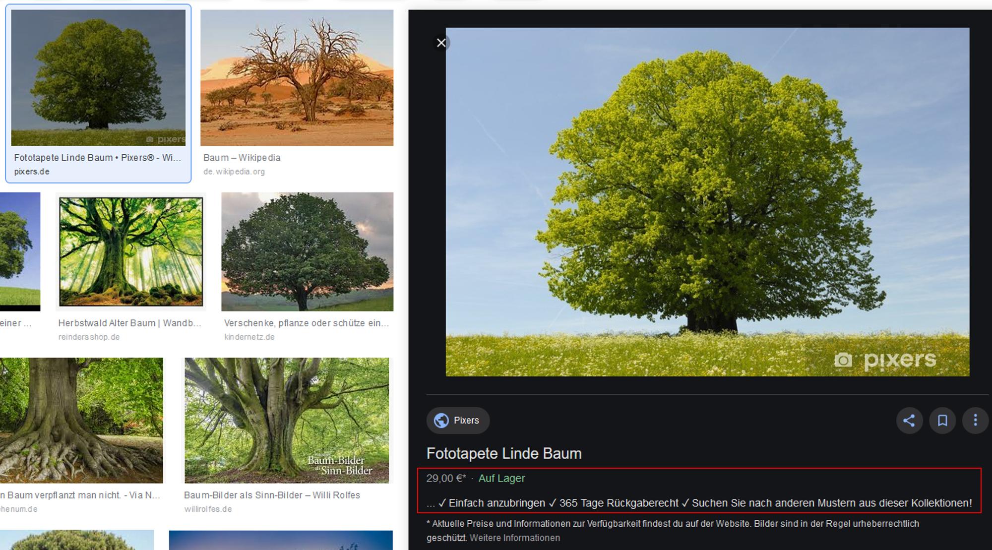 Viel SEO-Potential bringt der neue Dastellungs-Launch der Google-Bildersuche.