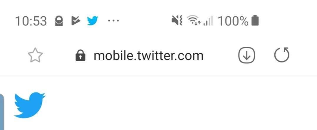 Hat eine Website eine PWA können Nutzer in URL-Zeilen ihrer mobilen Browser ein Instalations-Icon vorfinden.